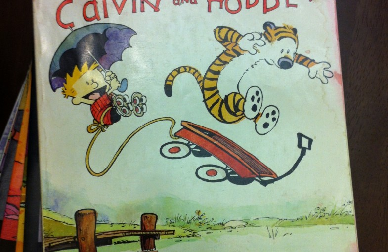 My Calvin and Hobbes book
